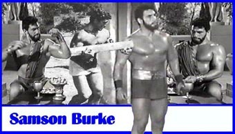 Herkulovská série - Samson Burke