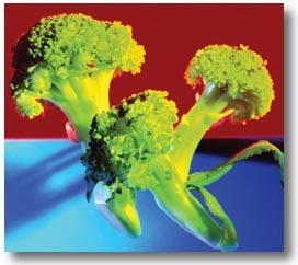 Máte rádi brokolici?