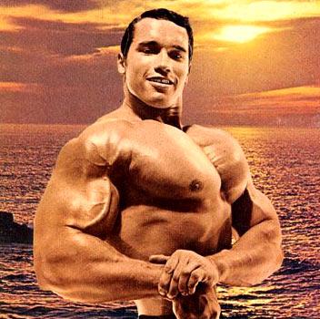Co (ještě) nevíte o Arnoldovi