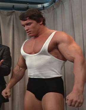 Střípky o Arnoldovi