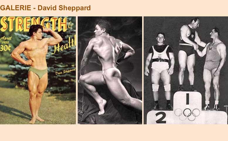 Galerie - David Sheppard