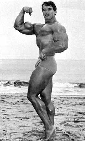 Vzpomínky na Arnolda