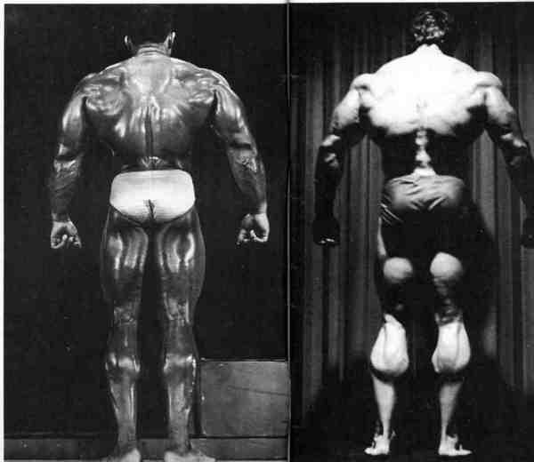Záda Oliva vs.Arnold