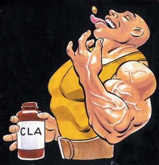 CLA - více účinků