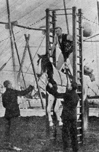 Pagel vynáší koně
