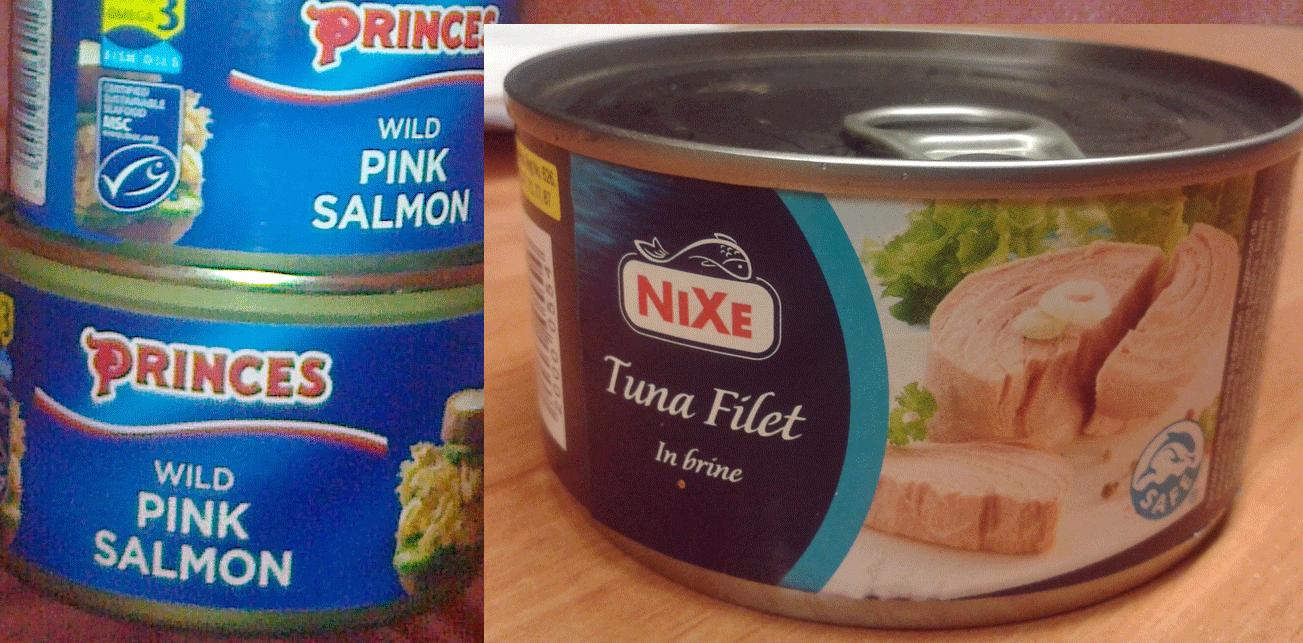 Tuniak verzus losos