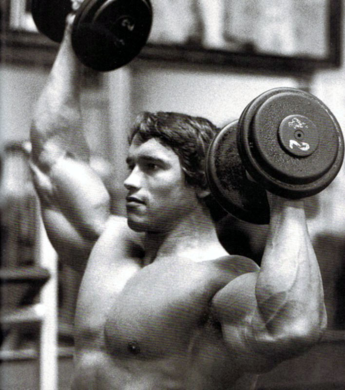 ARNOLD 07