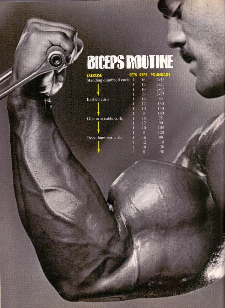 LONG 008 biceps trénink