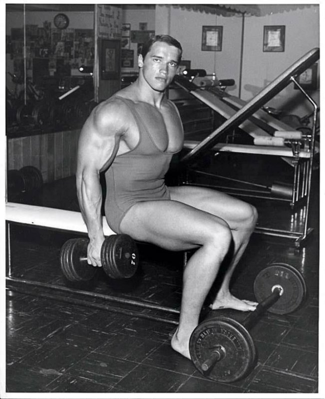 ARNOLD 005