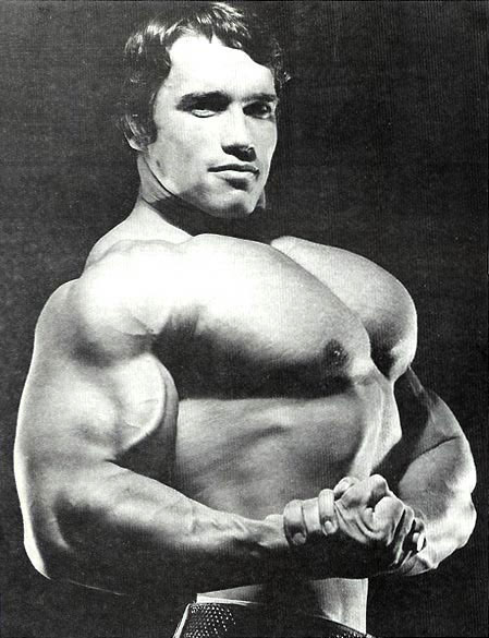 ARNOLD 05
