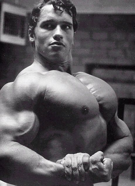 ARNOLD 06