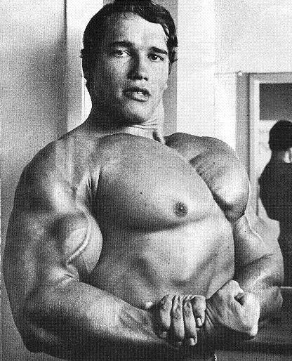ARNOLD 09