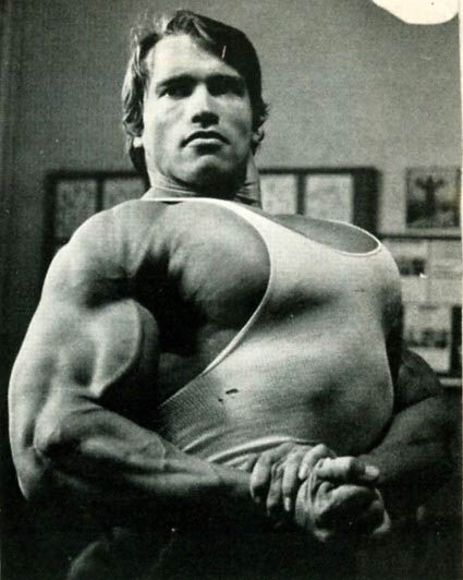 ARNOLD 10