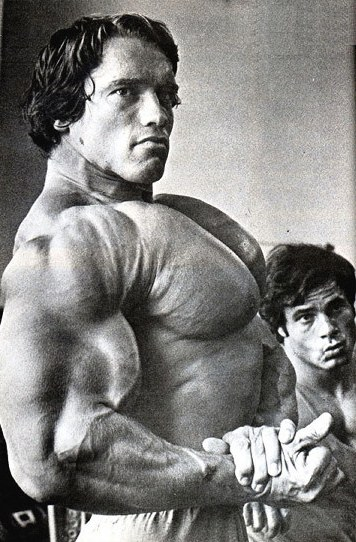 ARNOLD 13